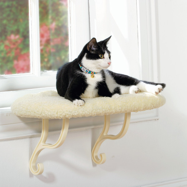 Window Perches For Cats Help Make Apartments Pet Friendly